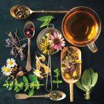 Ghidul ceaiurilor de plante