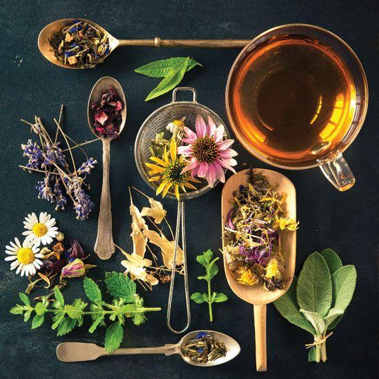 Foto: motherearthliving.com