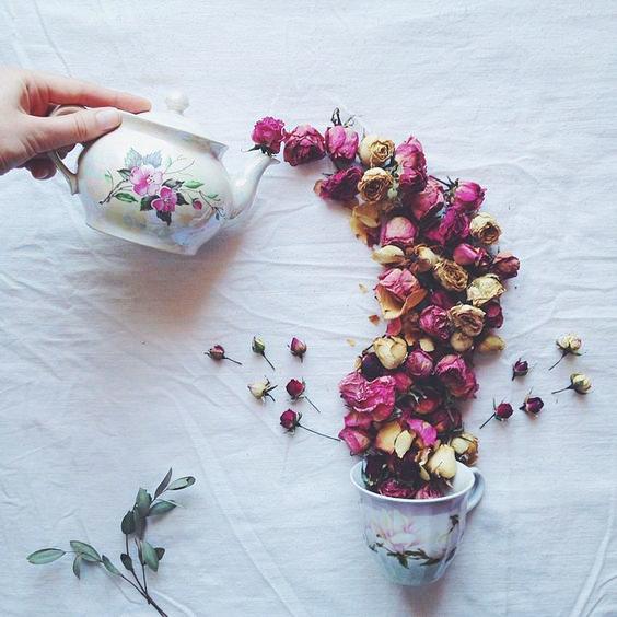 petale trandafiri