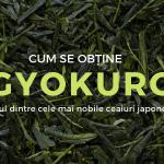 Cum se obține Gyokuro, unul dintre cele mai nobile ceaiuri japoneze