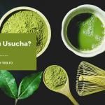 Koicha sau Usucha? Două moduri de preparare a ceaiului matcha