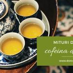 Mituri despre cofeina din ceai