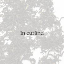 Clepsidra pentru ceai